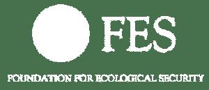 fes_logo-01-01